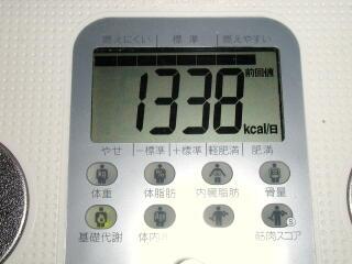 2009.1.7基礎代謝