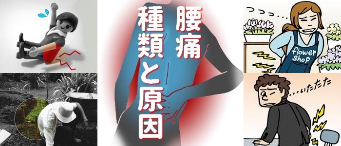 腰痛種類と原因