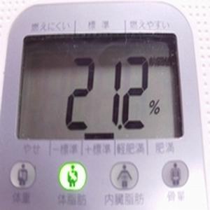 ダイエット2週間経過 2度目ダイエット2010年1月22日体脂肪率