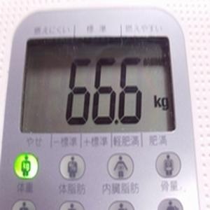 ダイエット2週間経過 2度目ダイエット2010年1月22日体重
