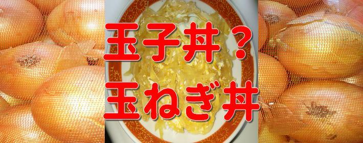 5キロ378円の玉ねぎを使って玉子丼(玉ねぎ丼)を作った